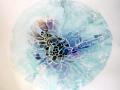 diatom_01