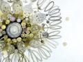 diatom_03