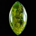 African Green Opal2